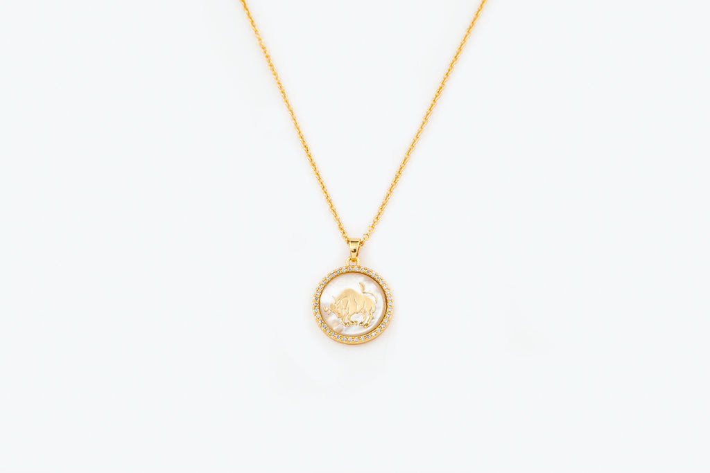 Mother Of Pearl Zodiac  Necklace