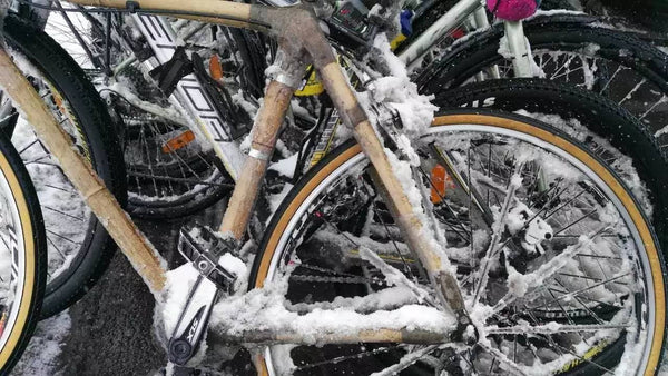 More Frozen Bikes