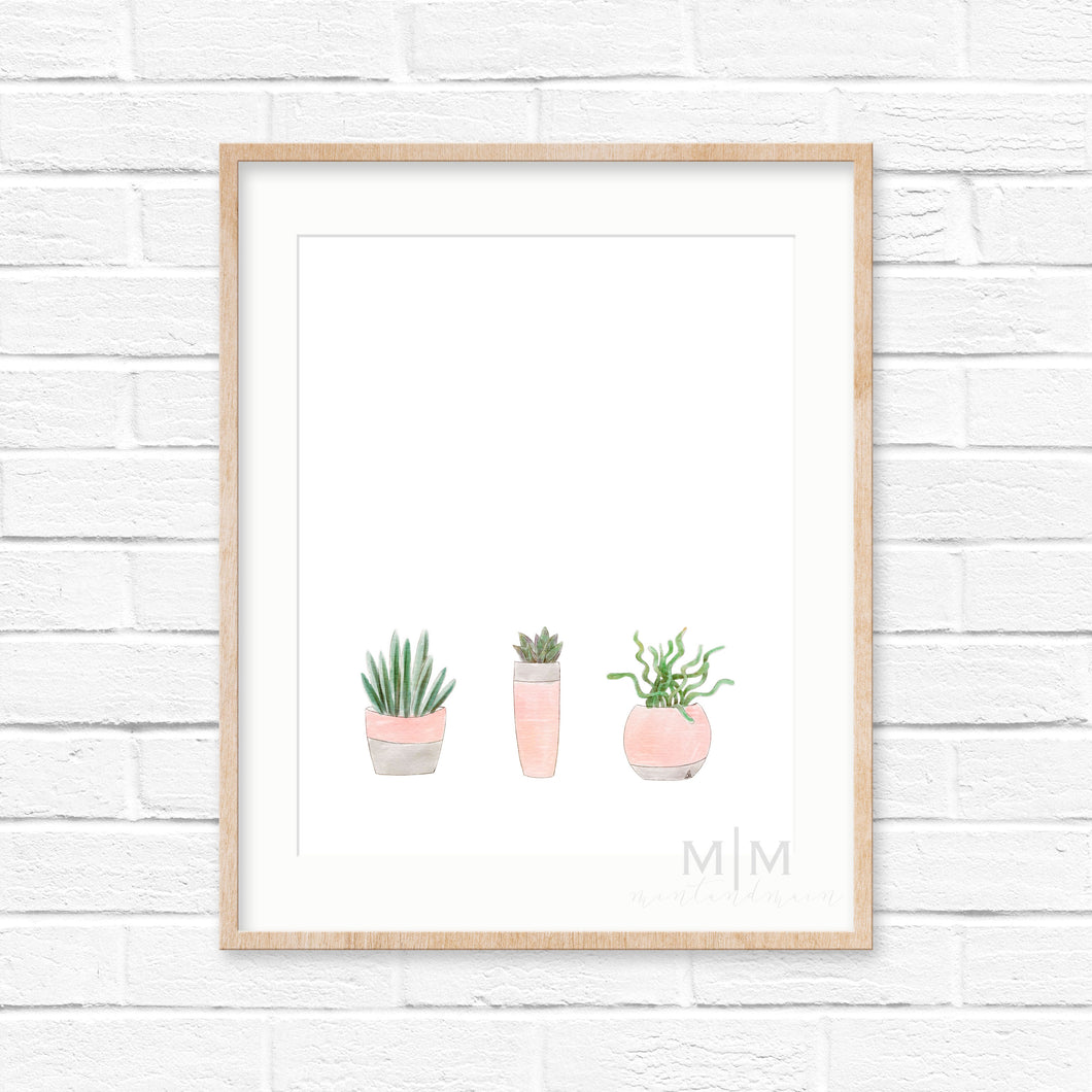 Three Little Succulents Art Print