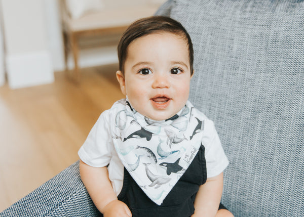 Waves Bandana Bib Set