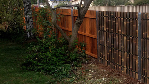 Paling Fence Before and After