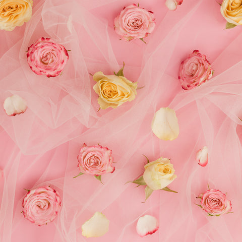 tulle and roses wall backdrop party