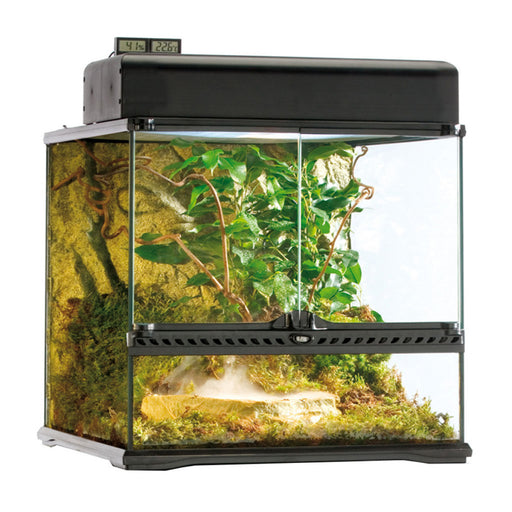 Exo Terra Glass Terrarium, Small Wide L45 x D45 x H45cm.