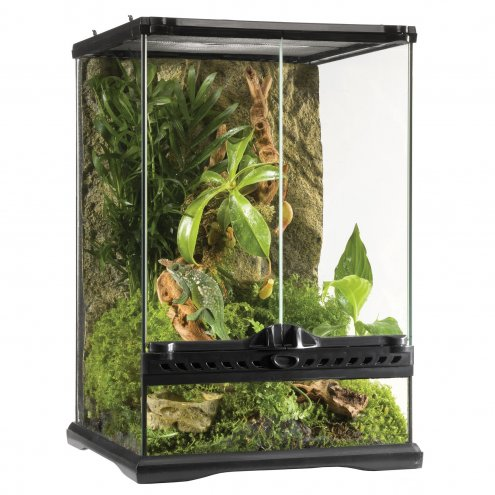 Exo Terra Glass Terrarium Mini Tall - 30x30x45cm.