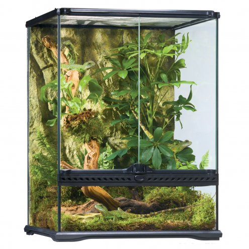 Exo Terra Glass Terrarium Small Tall - 45x45x60cm.