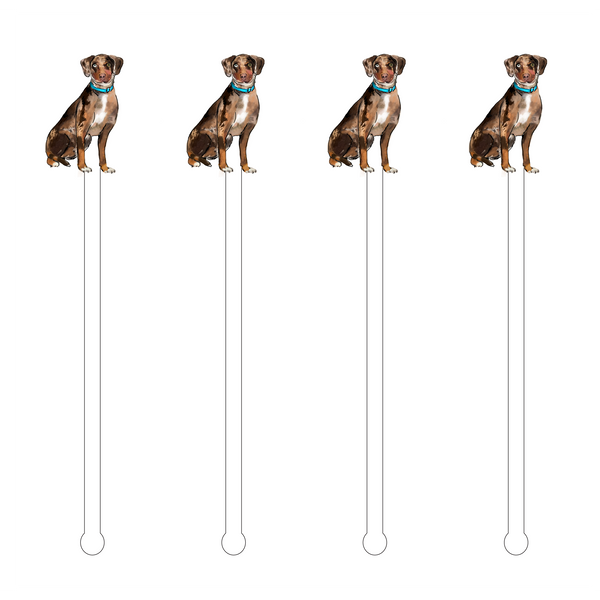 CATAHOULA SITTING ACRYLIC STIR STICKS