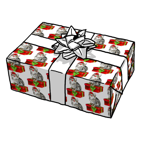 Kitty Cat Christmas Gift Wrap