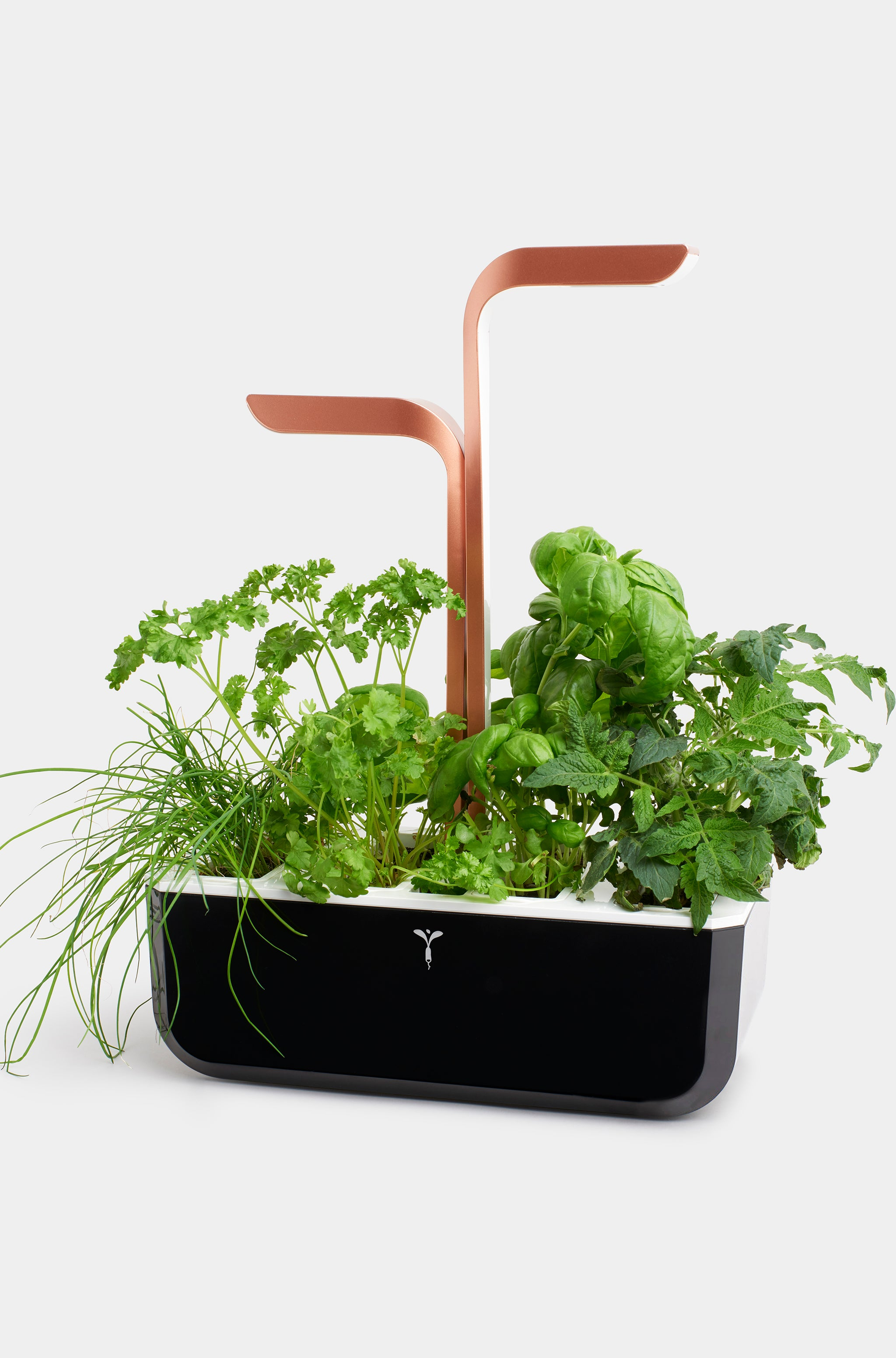 Veritable Smart Indoor Garden Herb Kit