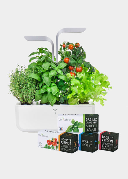 Veritable Smart Garden Lingots (Seeds)