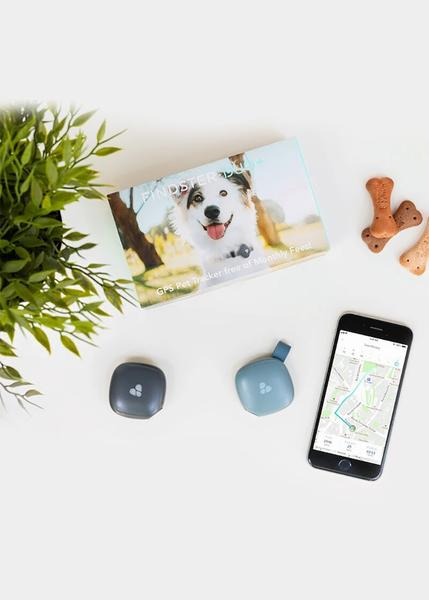 Findster Duo+ All-in-one GPS Pet Tracker and Pet Activity Monitor