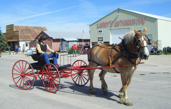 draft horse and buggy