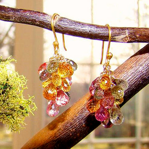 Multi-color Sapphire grape Earrings