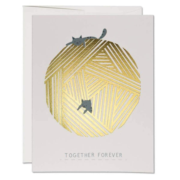 KITTENS TOGETHER FOREVER ANNIVERSARY CARD