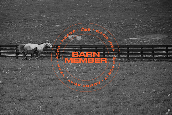 BARNFounder (LIMITED)