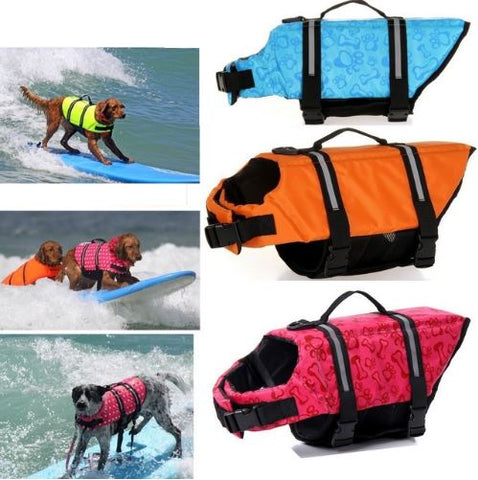 different dog life jacket colors