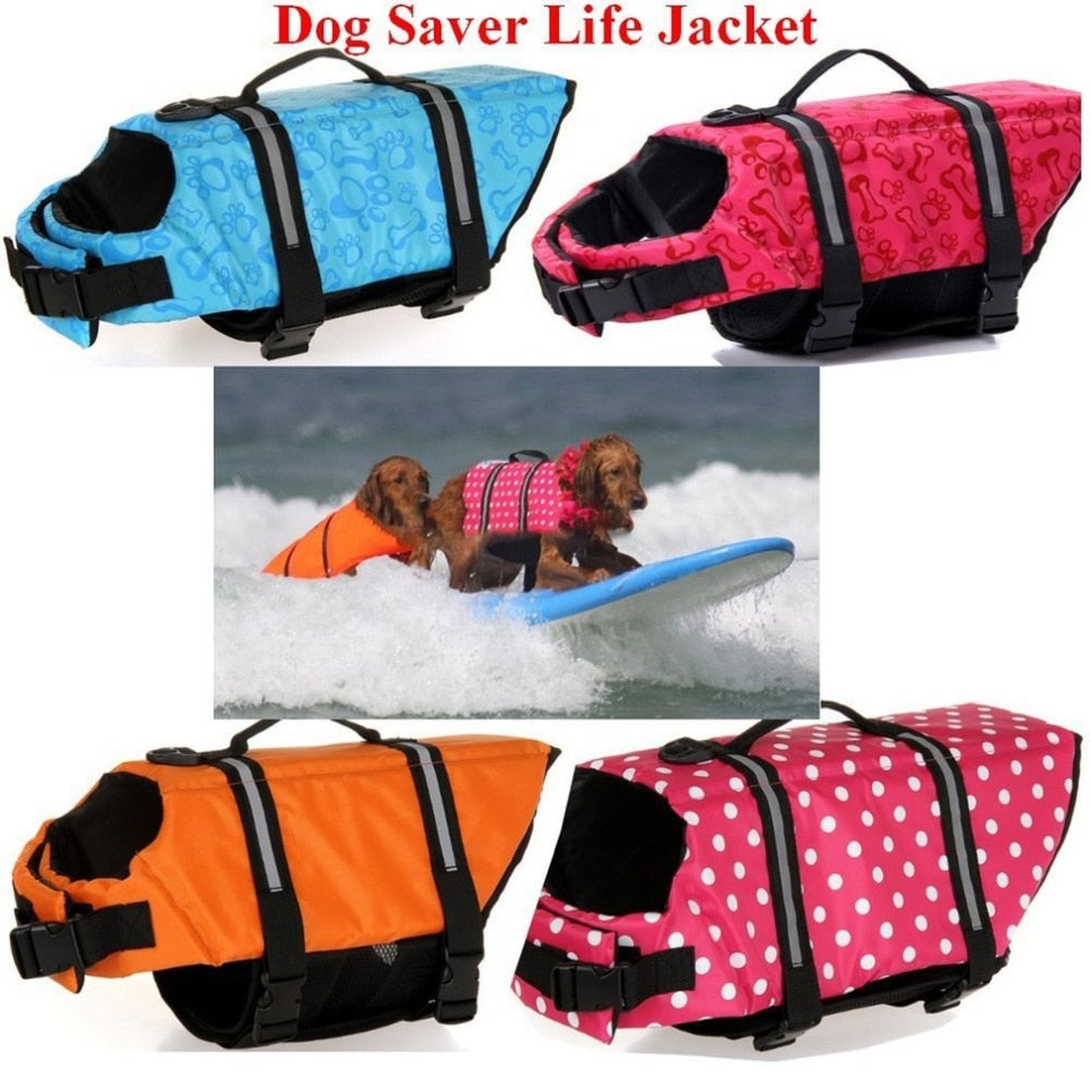 dog life jacket colors