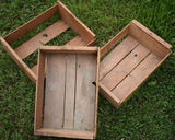 Antique primitive Shakers flowers seeds box crate garden potting bench decor