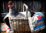 black white farmhouse hen chicken rooster life like basket cupboard tuck doll