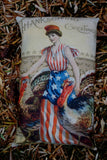 Thanksgiving Day vintage AMERICAN Turkey patriotic flag pillow with lady liberty