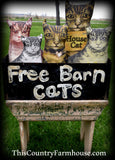 primitive style old Free barn cats box with FIVE kitties ONE OF A KIND set