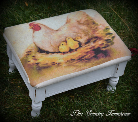 Darling Farmhouse Chicken storage foot stool mini bench