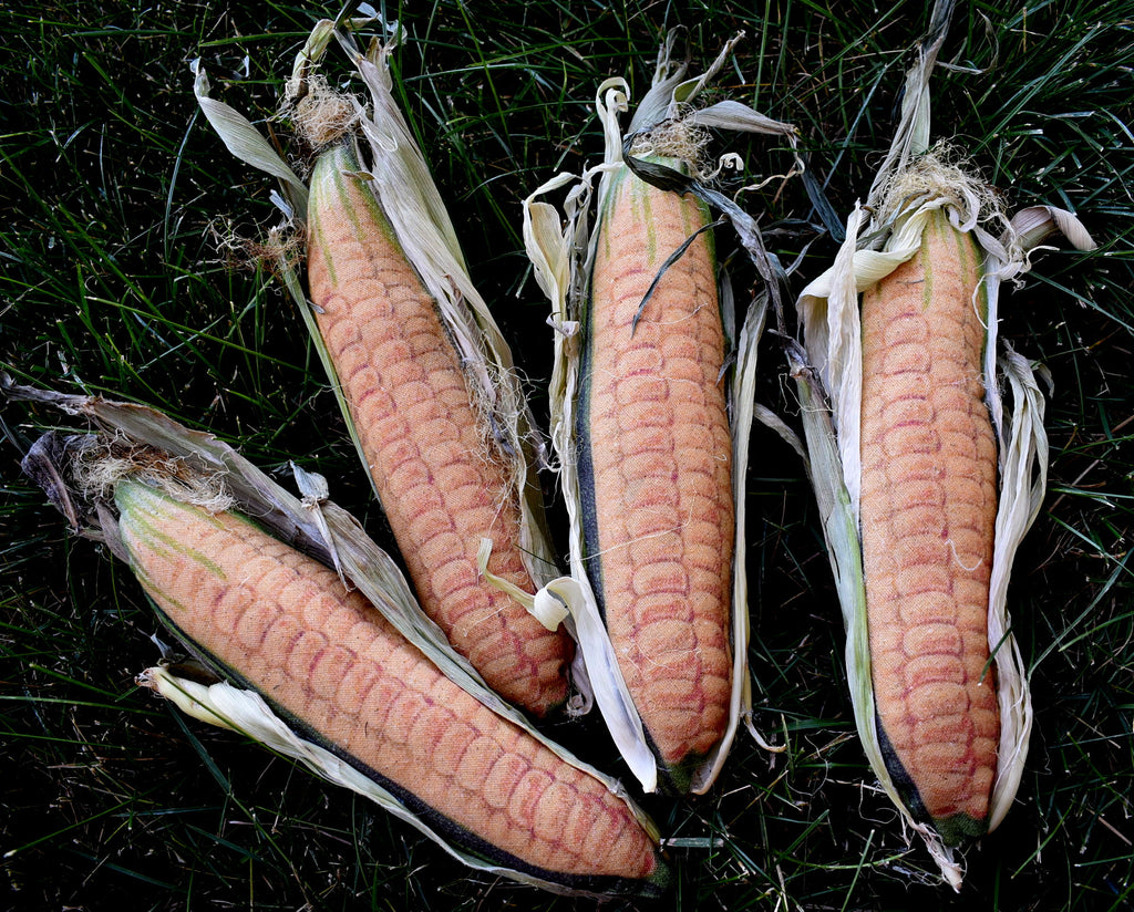 True to size Harvest Garden Corn tuck