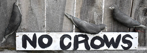 Primitive Roadside sign NO CROWS black bird farmhouse rustic SUPER CUTE