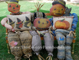 My scarecrows -not scaring any crows