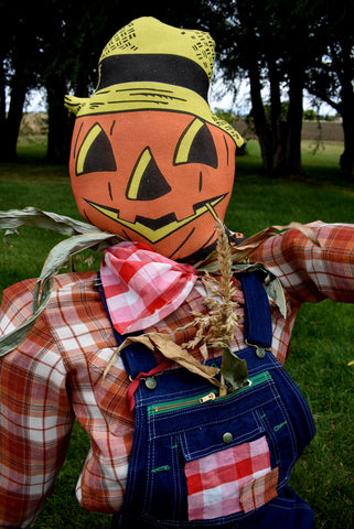 Darling Scarecrow in overalls Farmhouse Fall Autumn Garden Pumpkin Jack O lantern Farmer