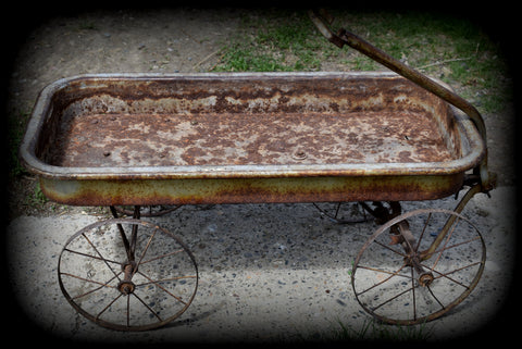 Super AWESOME spoked wheel antique cart wagon sweet old girl!!!