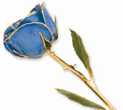 Lacquer Dipped Gold Trim Blue Rose