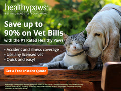 Healthy Paws Insurance