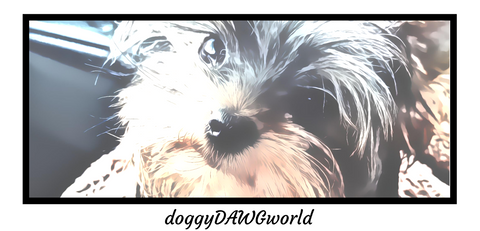 doggyDAWGworld.com