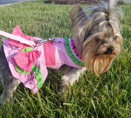 WATERMELON DRESS HARNESS (Matching Leash) - doggyDAWGworld.com