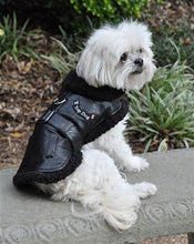 Load image into Gallery viewer, TOP DOG FLIGHT JACKET (with leash) - doggyDAWGworld.com
