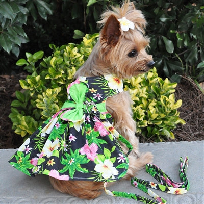 TWILIGHT BLACK HAWAIIAN HIBISCUS HARNESS DRESS (Matching Leash) - doggyDAWGworld.com
