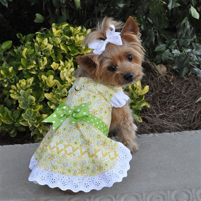 EMILY YELLOW FLORAL & LACE HARNESS DRESS (Matching Leash) - doggyDAWGworld.com