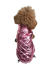 Load image into Gallery viewer, GALLACTICA COAT -SILVER - doggyDAWGworld.com