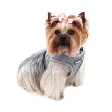Load image into Gallery viewer, SPORTS MESH HARNESS VEST- Grey - doggyDAWGworld.com