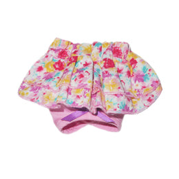 CLARA DIAPER WORN TO ASSIST WITH POTTY, HOUSE TRAINING, INCONTINENCE, AND TIME OF MONTH.
