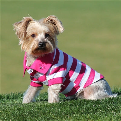STRIPED POLO SHIRT (PINK) - doggyDAWGworld.com