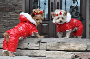 """RUFFIN IT"" SNOW SUIT (RED) - doggyDAWGworld.com"