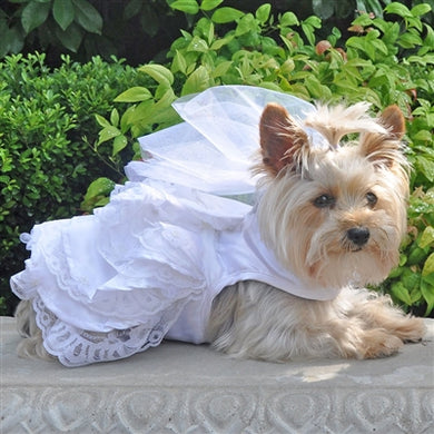 WHITE SATIN WEDDING HARNESS (Matching Leash)