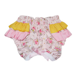 ALICE DIAPER WORN TO ASSIST WITH POTTY, HOUSE TRAINING, INCONTINENCE, AND TIME OF MONTH