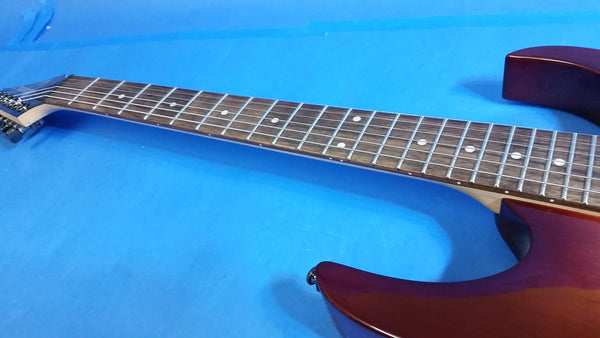 SOLD NEW Ibanez RG421-LVS Electric Guitar