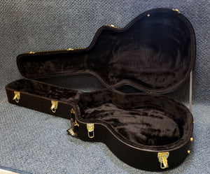 NEW Guardian Hardshell Case for Hollow-Body Electric Guitar