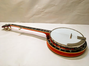 NEW Recording King RK-R30-BGM Flathead Banjo