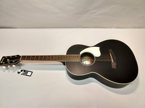 NEW Ibanez PN14-WK Acoustic Parlor Guitar