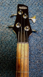 NEW Ibanez GSR100EX-BK Electric Bass Guitar