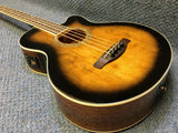 NEW Ibanez AEB 10E-DVS Acoustic/Electric bass